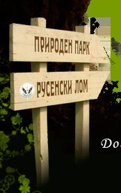ДПП Русенски Лом